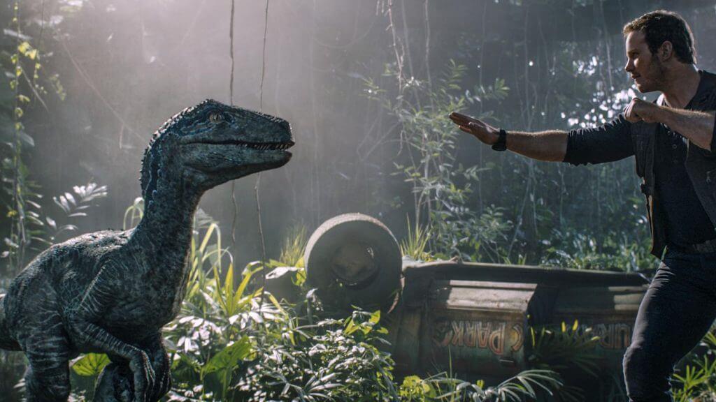 Blue, Raptor, Chris Pratt, Jurassic World: Fallen Kingdom